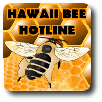 Portfolio Hawaii Bee Hotline
